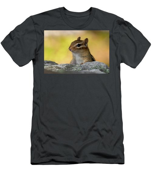 Posing Chipmunk Men's T-Shirt (Athletic Fit)