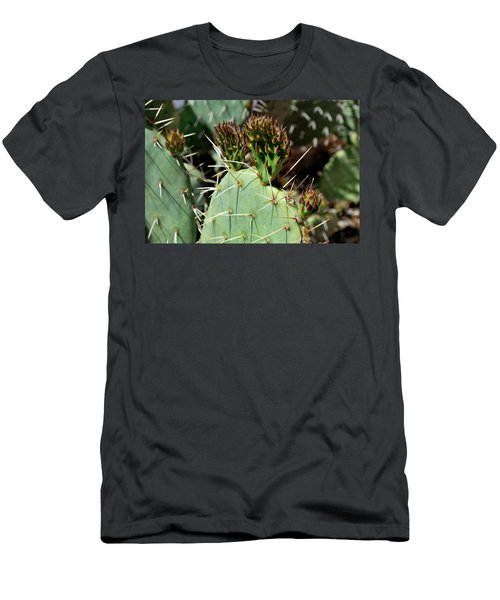 Prickly Pear Buds Men's T-Shirt (Athletic Fit)