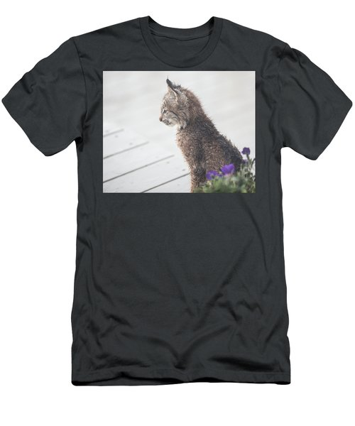 Profile In Kitten Men's T-Shirt (Athletic Fit)