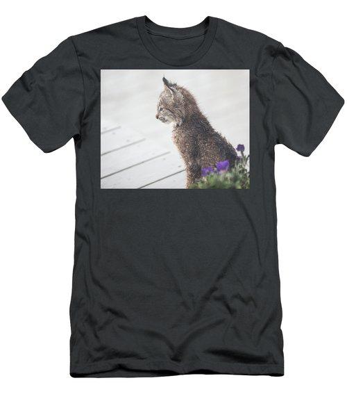 Profile In Kitten Men's T-Shirt (Athletic Fit)