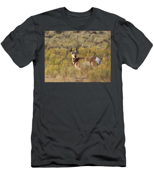 Pronghorn Doe Men's T-Shirt (Athletic Fit)
