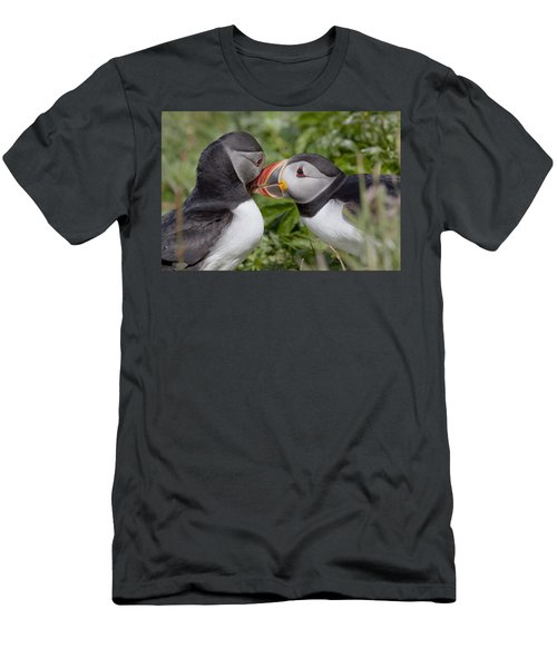Puffin Love Men's T-Shirt (Athletic Fit)