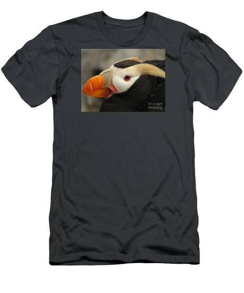 Puffin Portrait Men's T-Shirt (Athletic Fit)