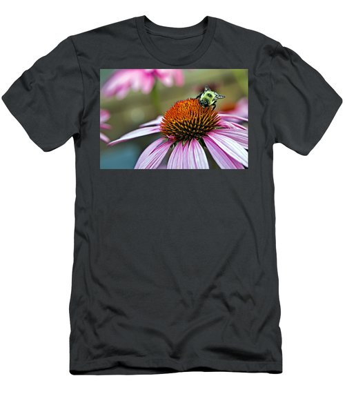 Purple Cone Flower And Bee Men's T-Shirt (Athletic Fit)