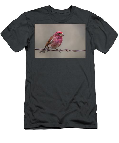 Men's T-Shirt (Slim Fit) featuring the photograph Purple Finch On Barbwire by Paul Freidlund
