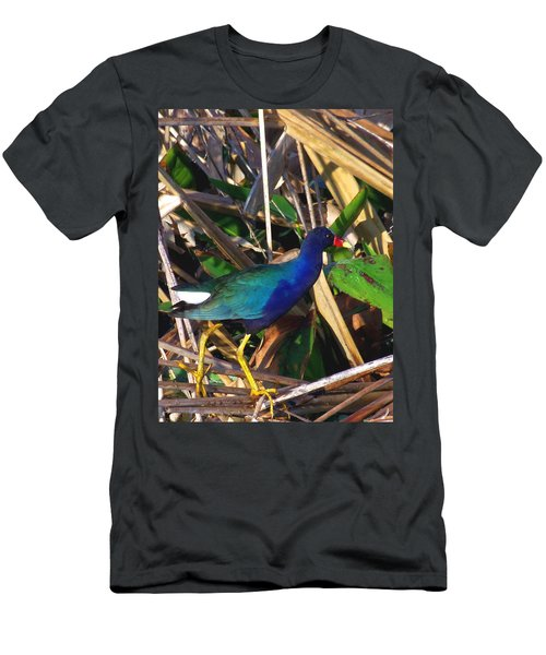 Purple Galinule 000 Men's T-Shirt (Slim Fit) by Chris Mercer
