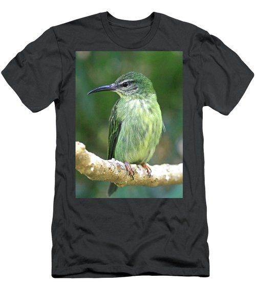 Purple Honeycreeper Female Men's T-Shirt (Athletic Fit)