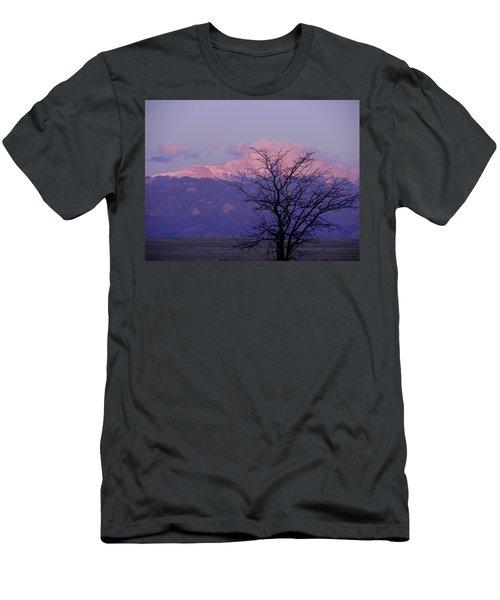 Purple Mountain Majesty Men's T-Shirt (Athletic Fit)