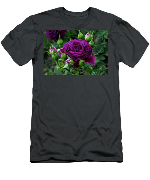 Purple Rose Men's T-Shirt (Slim Fit) by Alex Galkin