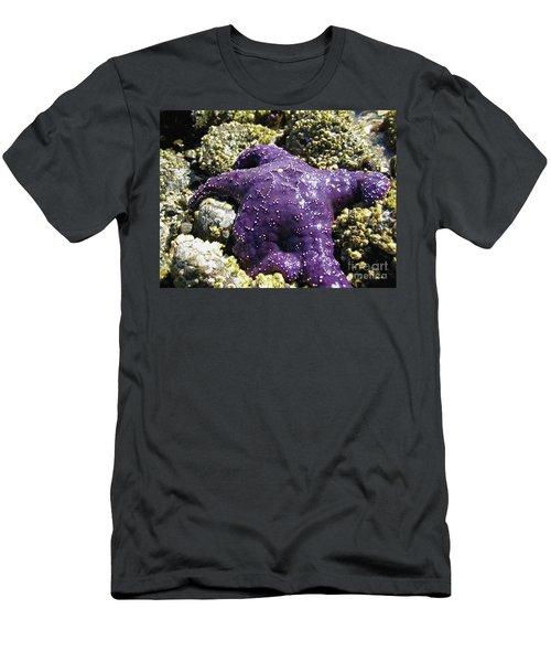 Purple Star Fish Men's T-Shirt (Athletic Fit)