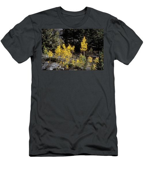 Aspens In Fall At Eleven Mile Canyon, Colorado Men's T-Shirt (Slim Fit) by John Brink