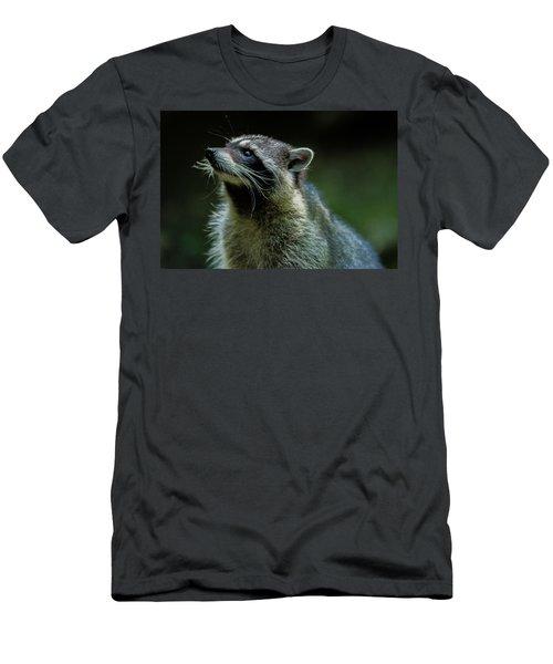 Raccoon 1 Men's T-Shirt (Athletic Fit)