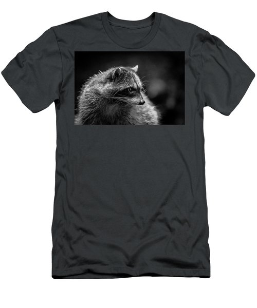Raccoon 3 Men's T-Shirt (Athletic Fit)