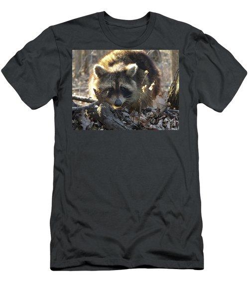 Raccoon Sunset Men's T-Shirt (Slim Fit) by Erick Schmidt