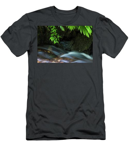 Rain Forest Stream Men's T-Shirt (Athletic Fit)