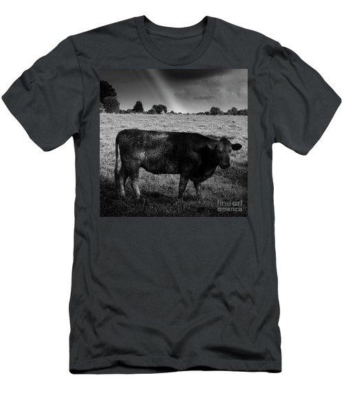 Rainbow Cow Men's T-Shirt (Athletic Fit)