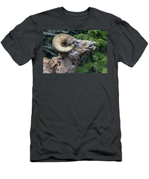 Ram Alert Men's T-Shirt (Athletic Fit)