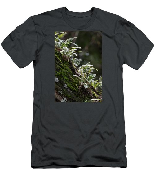 Reach For The Light Men's T-Shirt (Slim Fit) by Christopher L Thomley