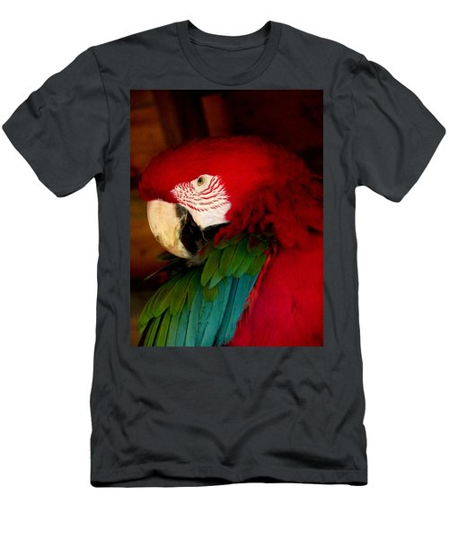 Red And Green Wing Macaw Men's T-Shirt (Athletic Fit)