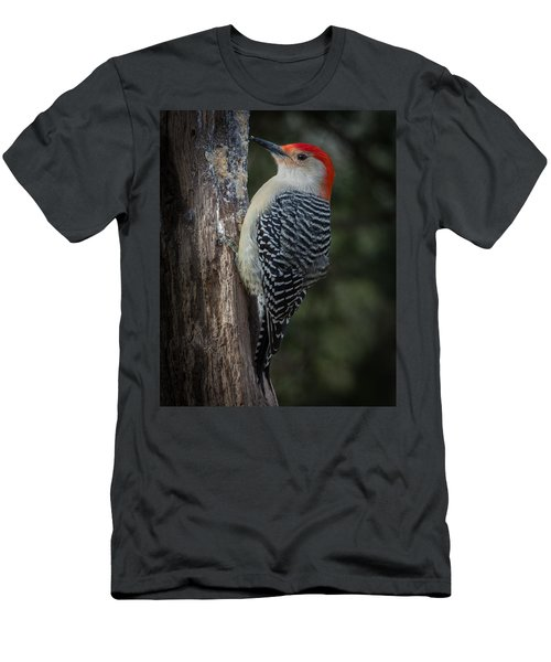 Red-bellied Woodpecker Men's T-Shirt (Slim Fit) by Kenneth Cole