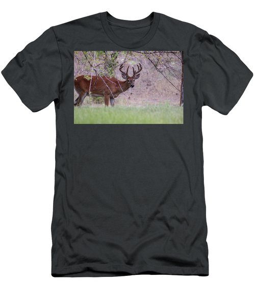 Men's T-Shirt (Athletic Fit) featuring the photograph Red Bucks 2 by Antonio Romero
