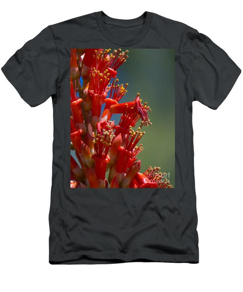 Red Cactus Flower 1 Men's T-Shirt (Athletic Fit)