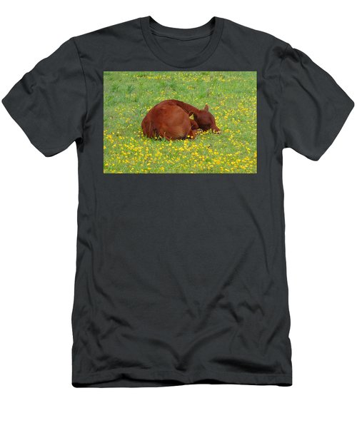 Red Calf In The Buttercup Meadow Men's T-Shirt (Athletic Fit)