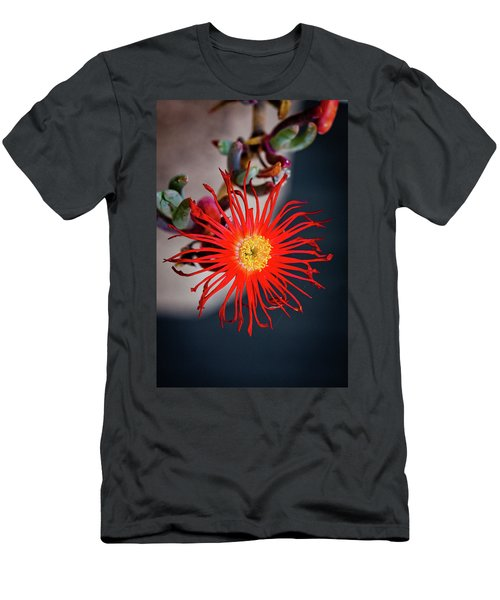 Men's T-Shirt (Slim Fit) featuring the photograph Red Crab Flower by Bruno Spagnolo