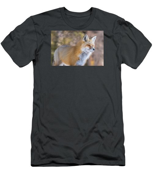 Men's T-Shirt (Slim Fit) featuring the photograph Red Fox In Winter Glow by Yeates Photography