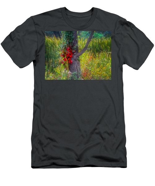 Red Leaves And Vines On Tree In Forest Of Reeds Men's T-Shirt (Slim Fit) by John Brink