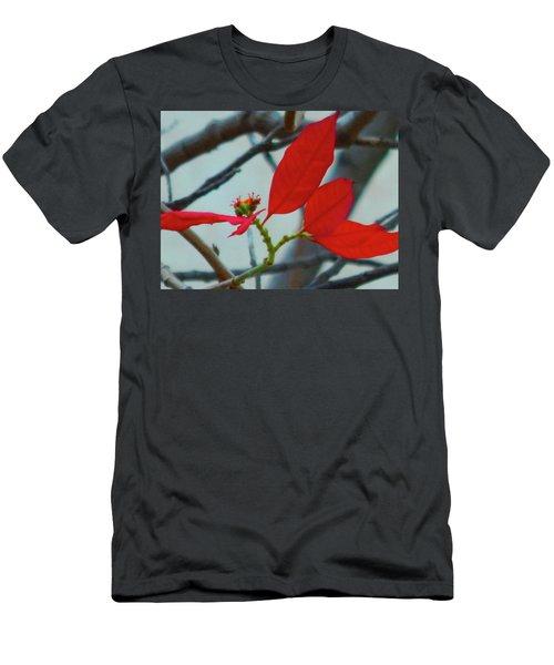 Red Leaves Men's T-Shirt (Slim Fit) by Beto Machado