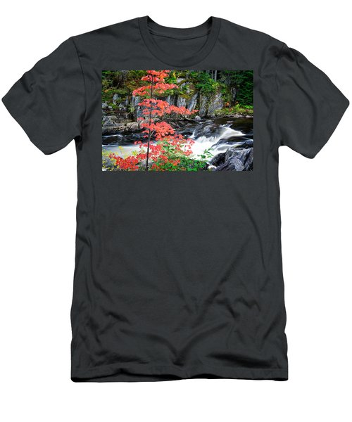 Men's T-Shirt (Athletic Fit) featuring the photograph Red Maple Gulf Hagas Me. by Michael Hubley