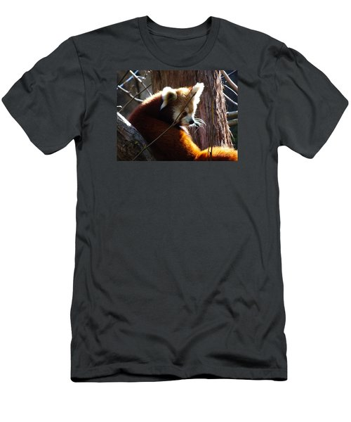 Men's T-Shirt (Athletic Fit) featuring the photograph Red Panda by Angela DeFrias