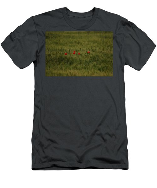 Red Poppies In Meadow Men's T-Shirt (Athletic Fit)