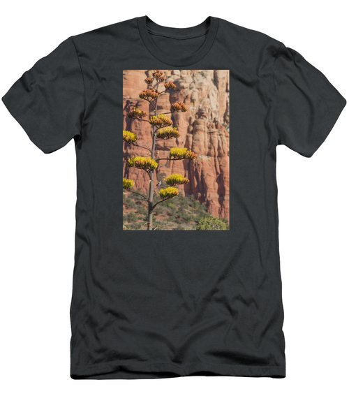 Red Rocks And Century Plant Men's T-Shirt (Athletic Fit)