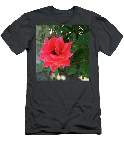 Pink Rose  Men's T-Shirt (Slim Fit) by Don Pedro De Gracia
