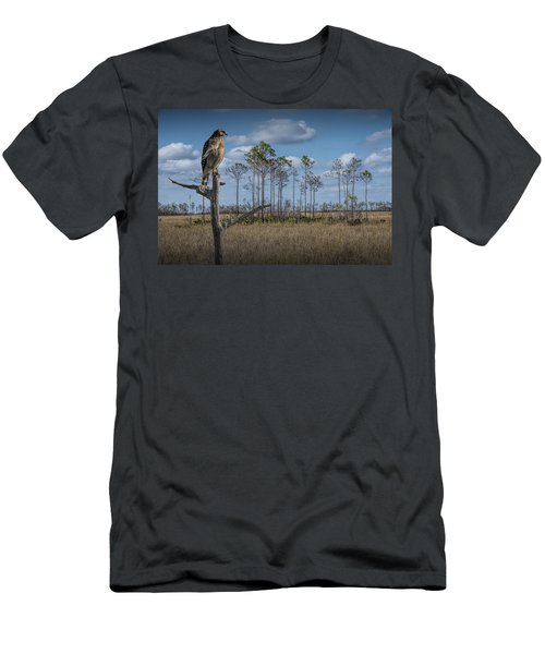 Red Shouldered Hawk In The Florida Everglades Men's T-Shirt (Athletic Fit)