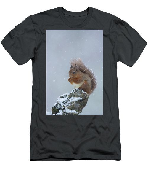 Red Squirrel In A Blizzard Men's T-Shirt (Athletic Fit)