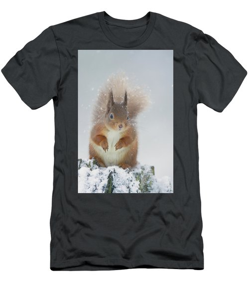 Red Squirrel In Winter Men's T-Shirt (Athletic Fit)