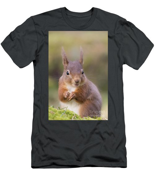 Red Squirrel - Scottish Highlands #18 Men's T-Shirt (Athletic Fit)
