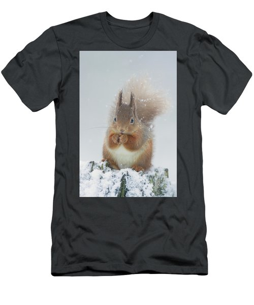 Red Squirrel With Snowflakes Men's T-Shirt (Athletic Fit)