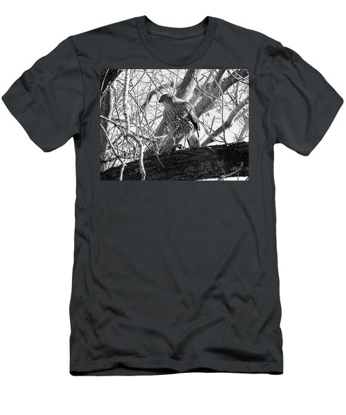 Red Tail Hawk In Black And White Men's T-Shirt (Athletic Fit)