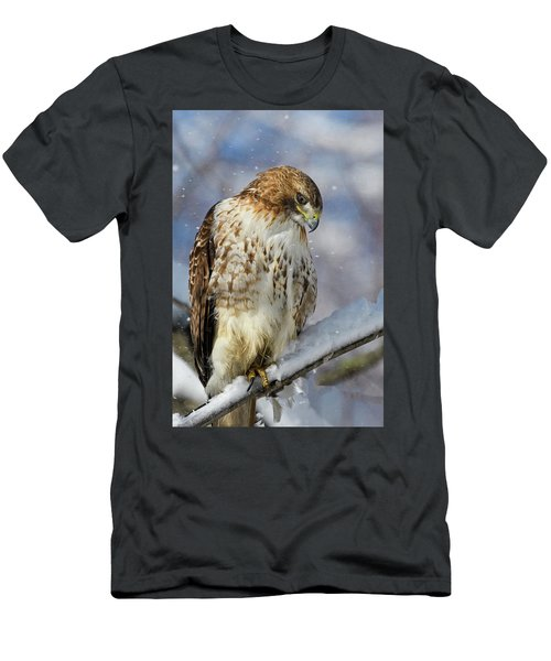 Red Tailed Hawk, Glamour Pose Men's T-Shirt (Athletic Fit)