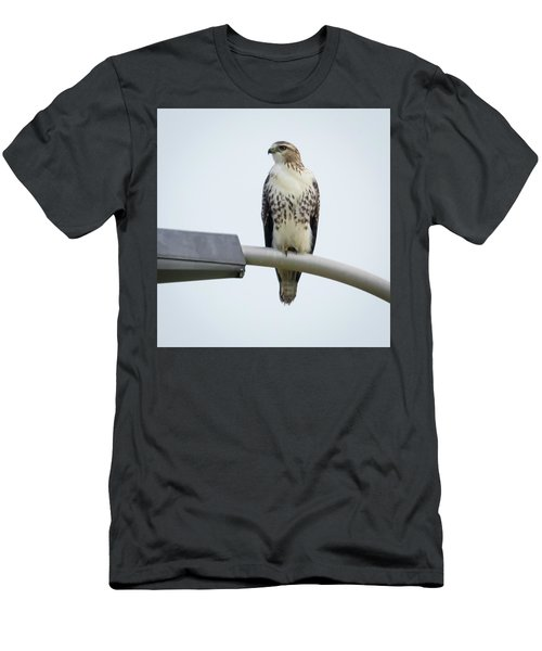 Men's T-Shirt (Athletic Fit) featuring the photograph Red-tailed Hawk Looking At Me by Ricky L Jones