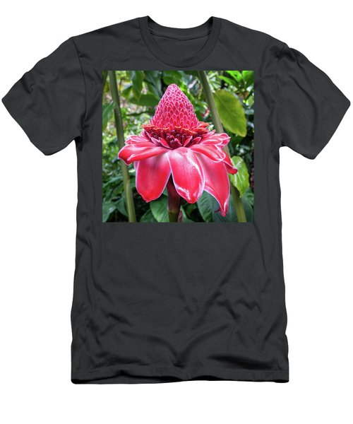 Red Torch Ginger Flower Men's T-Shirt (Athletic Fit)