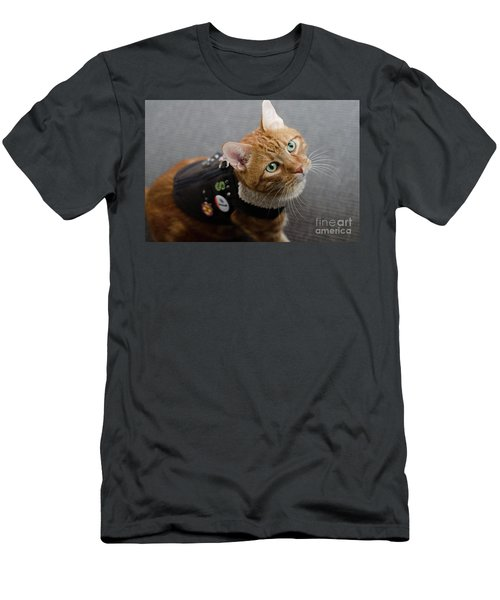 Red Tubby Cat Tabasco Jacket Men's T-Shirt (Athletic Fit)