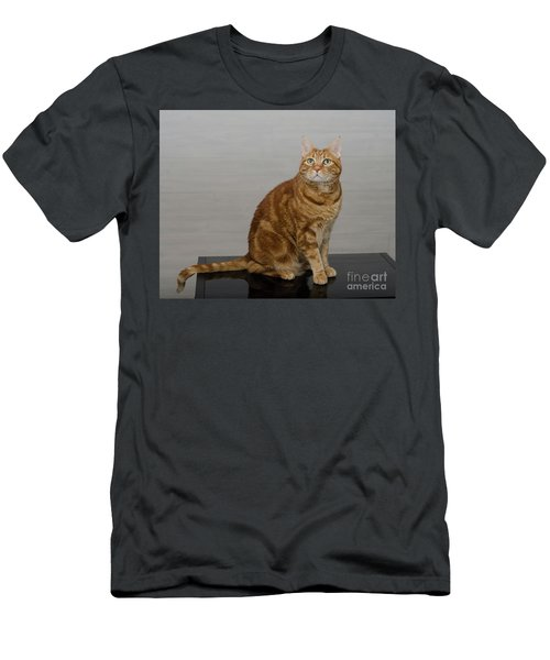 Red Tubby Cat Tabasco On Black Table Men's T-Shirt (Athletic Fit)