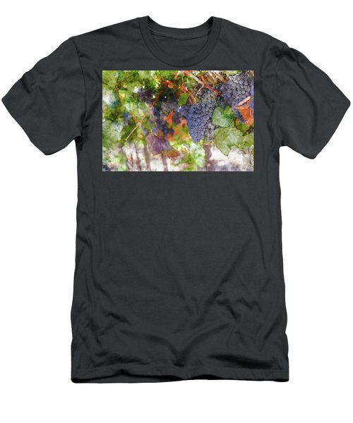 Red Wine Grapes On The Vine In Wine Country Men's T-Shirt (Athletic Fit)