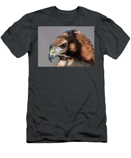 Redtail Hawk Men's T-Shirt (Athletic Fit)
