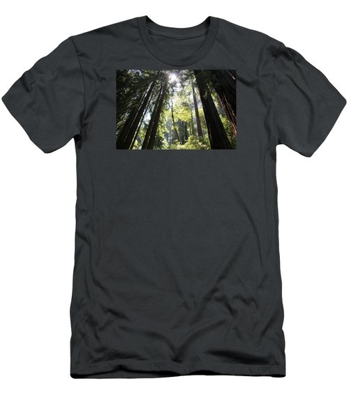 @redwoods Men's T-Shirt (Athletic Fit)